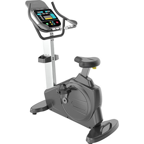IREB1012GM - UPRIGHT BIKE